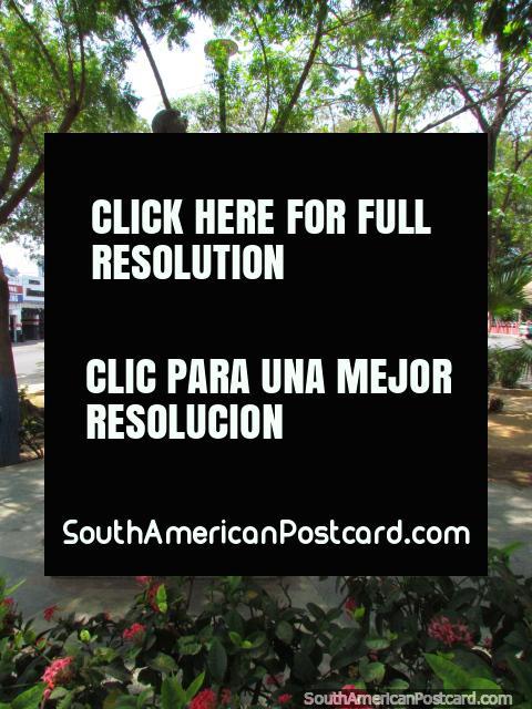 Plaza Dr. Adolfo d'Empaire em Maracaibo, agradável e sombrio. (480x640px). Venezuela, América do Sul.