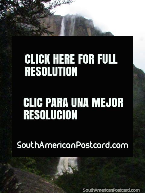 Angel Falls (Salto Angel) the tallest waterfall in the world! (480x640px). Venezuela, South America.