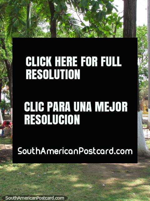 Locals relaxing in Plaza Bolivar in Barcelona. (480x640px). Venezuela, South America.