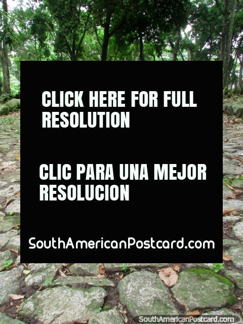The cobblestone paths around the ruins of Park El Fuerte - San Felipe. (480x640px). Venezuela, South America.