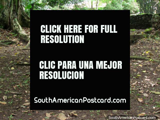 The cemetery at Park El Fuerte in San Felipe. (640x480px). Venezuela, South America.