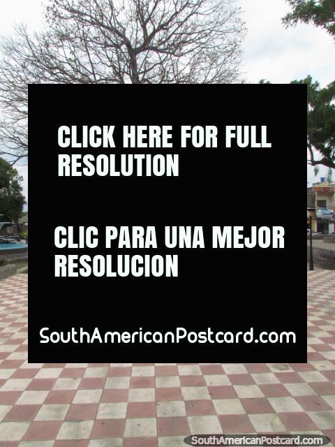 Checkered floor of Plaza Junin in San Felipe. (480x640px). Venezuela, South America.