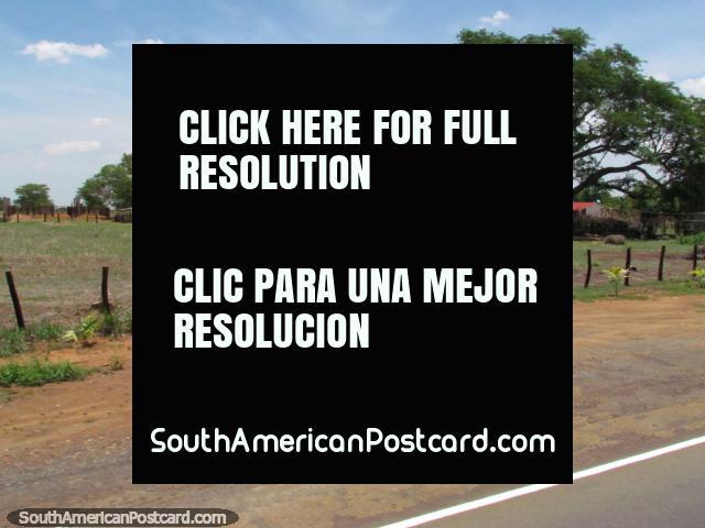 La agricultura de propiedades y comunidades entre Maracaibo y Coro. (640x480px). Venezuela, Sudamerica.