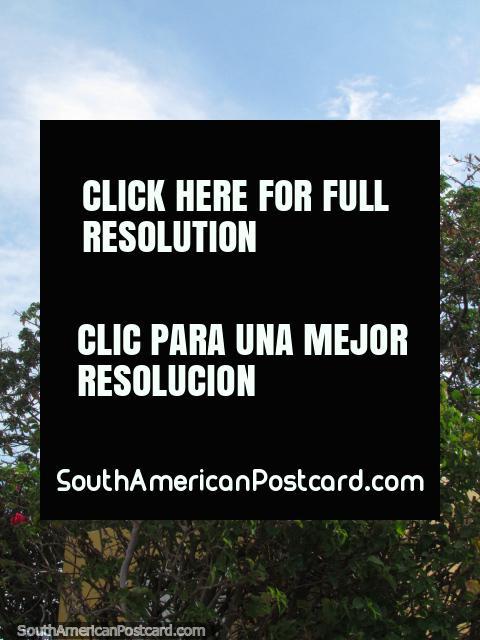 First Lady Luisa Pachano de Falcon statue in Coro. (480x640px). Venezuela, South America.