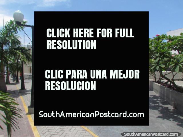 Plaza El Encuentro in Barquisimeto, no shortage of lights. (640x480px). Venezuela, South America.