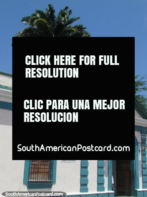 Edifïcio histórico verde e branco com palmeira atrás em Barquisimeto. (480x640px). Venezuela, América do Sul.