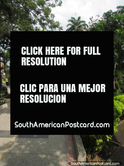 Praça Bolivar com árvores e jardins em Acarigua. (480x640px). Venezuela, América do Sul.