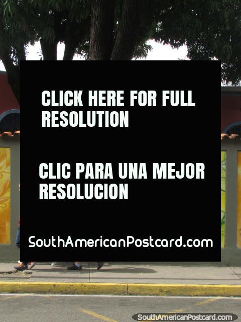 Simon Rodriguez, o bicentenário cobriu com telhas o mural em Acarigua. (480x640px). Venezuela, América do Sul.