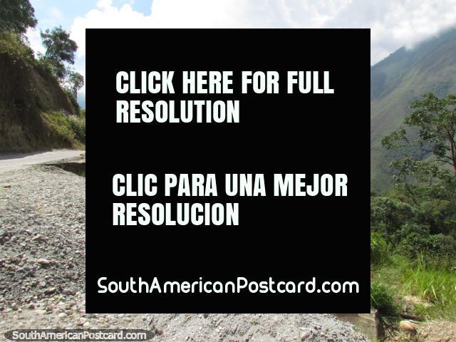Ascending the road between Barinitas and Santo Domingo. (640x480px). Venezuela, South America.