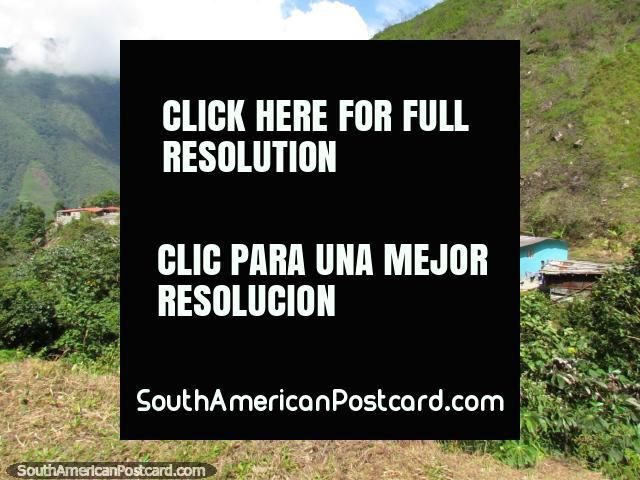 Houses in the mountains between Barinitas and Santo Domingo. (640x480px). Venezuela, South America.