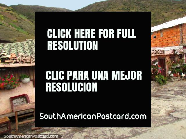Garden of flower pots on a building side in San Rafael de Mucuchies. (640x480px). Venezuela, South America.