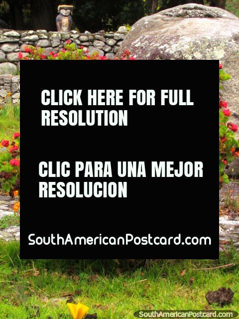 Pink flowers, a boulder and a voodoo creature in La Biguznos/Pedregal. (480x640px). Venezuela, South America.