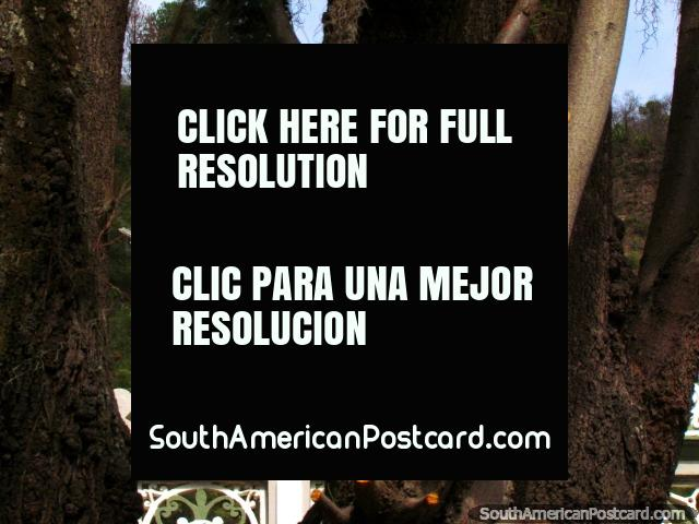 Uma figura religioso está em cima da igreja de Timotes. (640x480px). Venezuela, América do Sul.